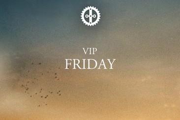VIP Festival Ticket Friday