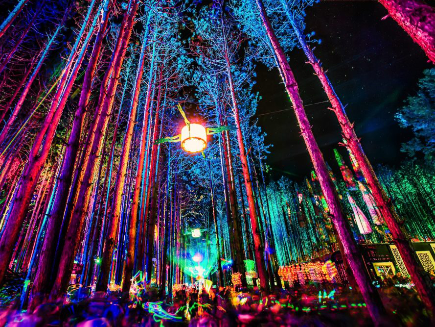 Electric Forest Festival 2020 TOP 10: EDM and Dance Festivals in the USA   Festicket Magazine