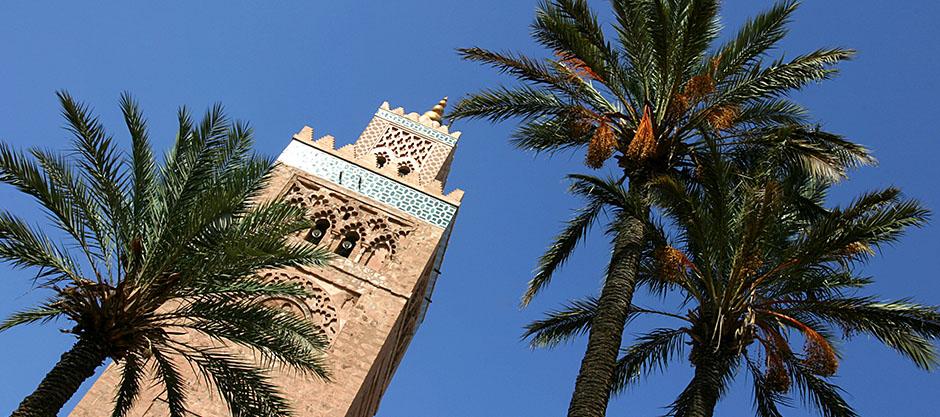 Marrakech & Oasis: Dance Unison