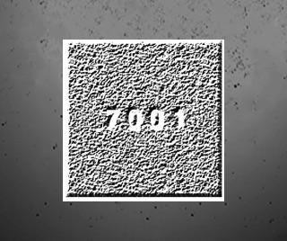 18/7001:festival